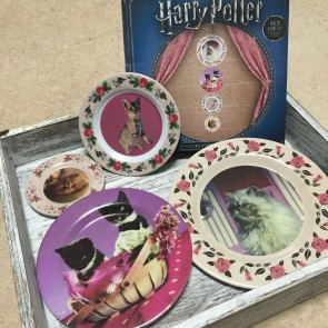 Harry Potter Teller 4er-Pack Umbridge Lootcrate Exclusive